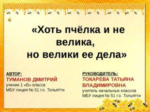«Хоть пчёлка и не велика, но велики ее дела» АВТОР: ТУМАНОВ ДМИТРИЙ ученик 1