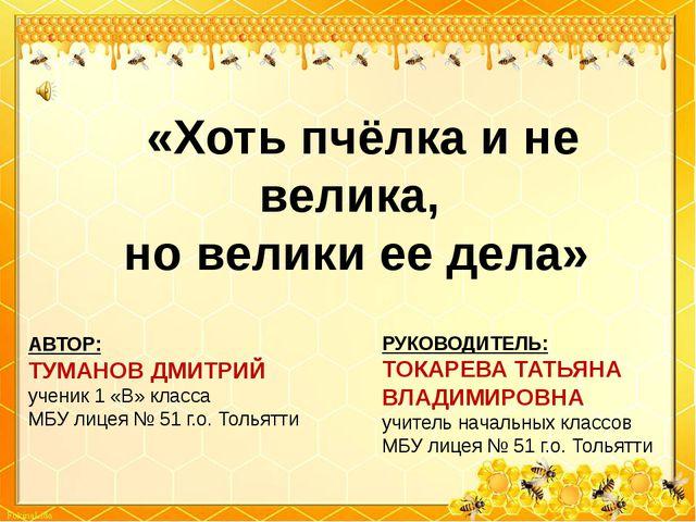 «Хоть пчёлка и не велика, но велики ее дела» АВТОР: ТУМАНОВ ДМИТРИЙ ученик 1...