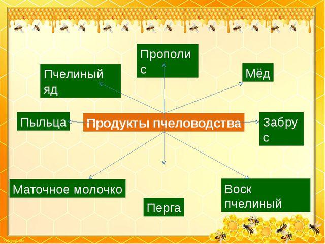 Мёд Пыльца Забрус Прополис Воск пчелиный Продукты пчеловодства Пчелиный яд Ма...