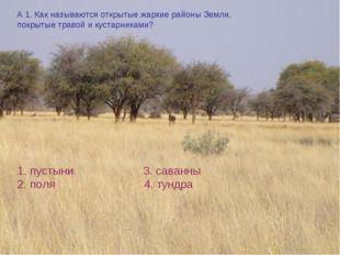 А 1. Как называются открытые жаркие районы Земли, покрытые травой и кустарник