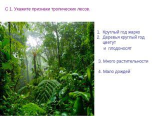 С 1. Укажите признаки тропических лесов. Круглый год жарко Деревья круглый го