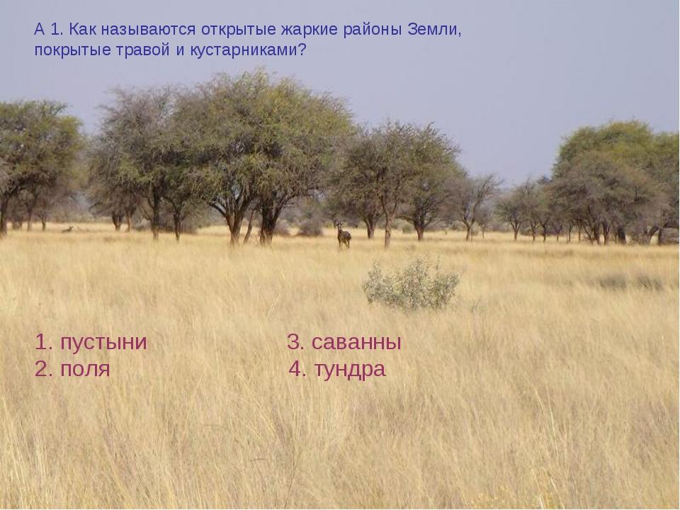 А 1. Как называются открытые жаркие районы Земли, покрытые травой и кустарник...