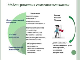 Интеллектуальный компонент Волевой компонент Эмоциональный компонент Знания У