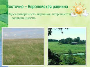 Восточно – Европейская равнина Здесь поверхность неровная, встречаются возвыш