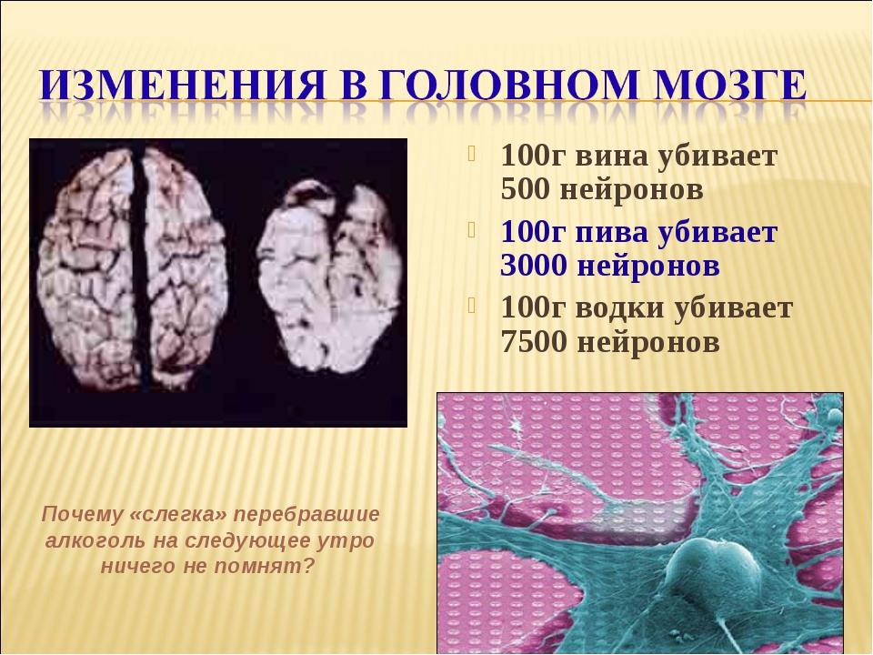 100г вина убивает 500 нейронов 100г пива убивает 3000 нейронов 100г водки уби...