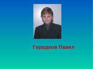 Городков Павел