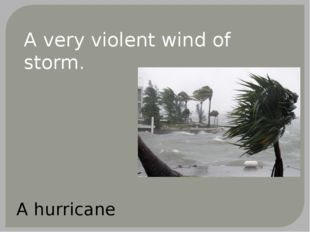 A very violent wind of storm. A hurricane