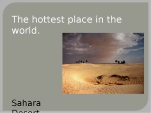 The hottest place in the world. Sahara Desert