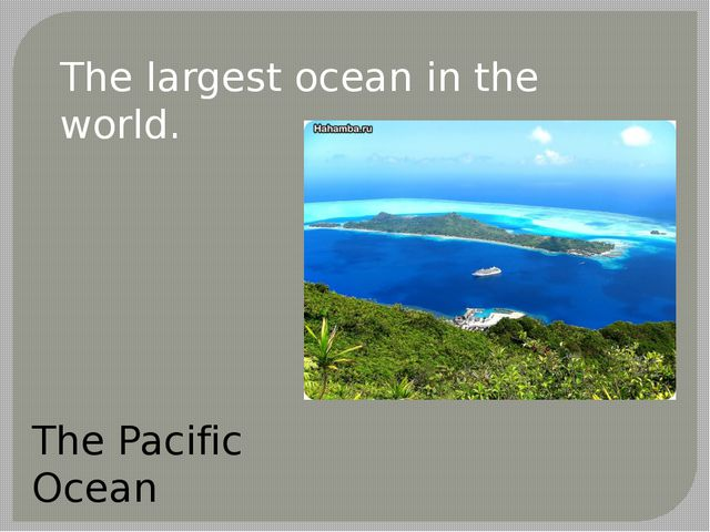 The largest ocean in the world. The Pacific Ocean
