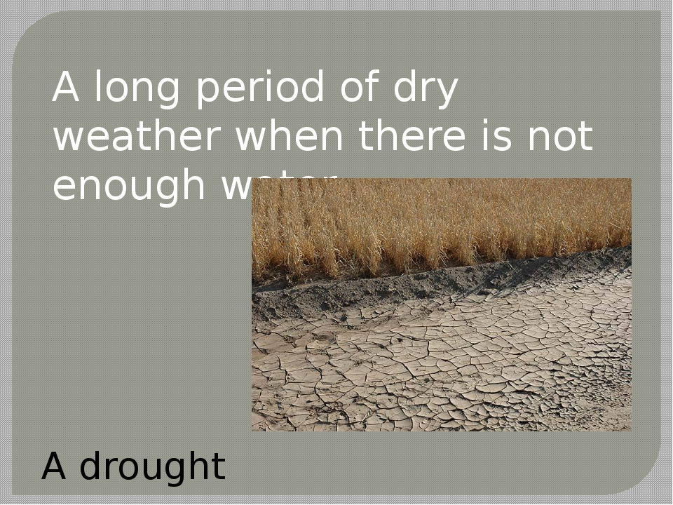 A long period of dry weather when there is not enough water. A drought
