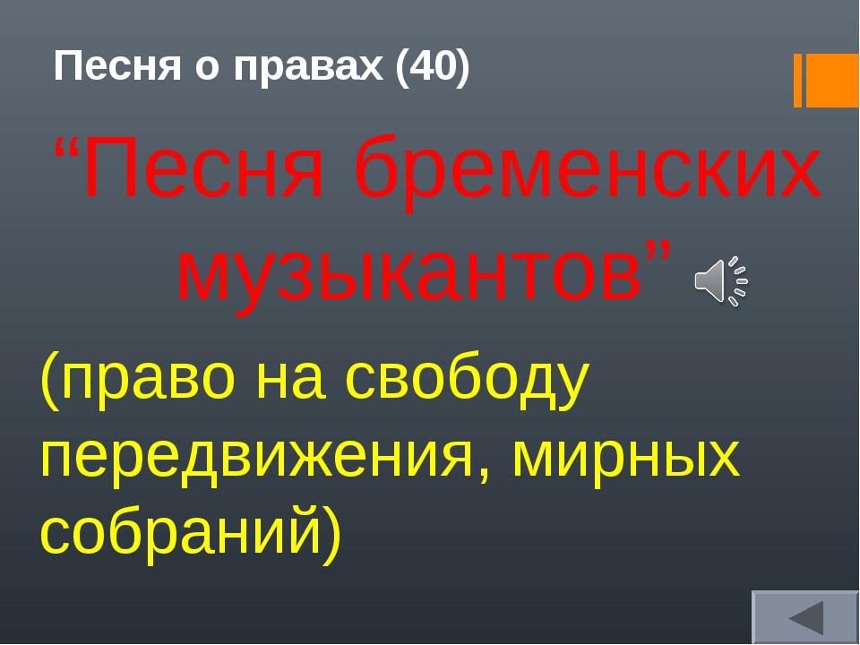 """Песня о правах (40) """"Песня бременских музыкантов"""" (право на свободу передвиже..."""