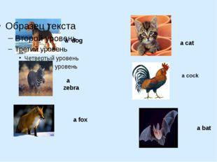 a dog a zebra a fox a cat a cock a bat
