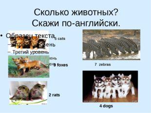 Сколько животных? Скажи по-английски. 5 cats 3 foxes 2 rats 7 zebras 4 dogs