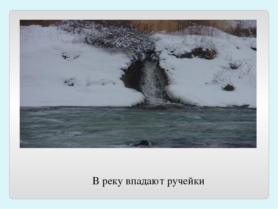 В реку впадают ручейки