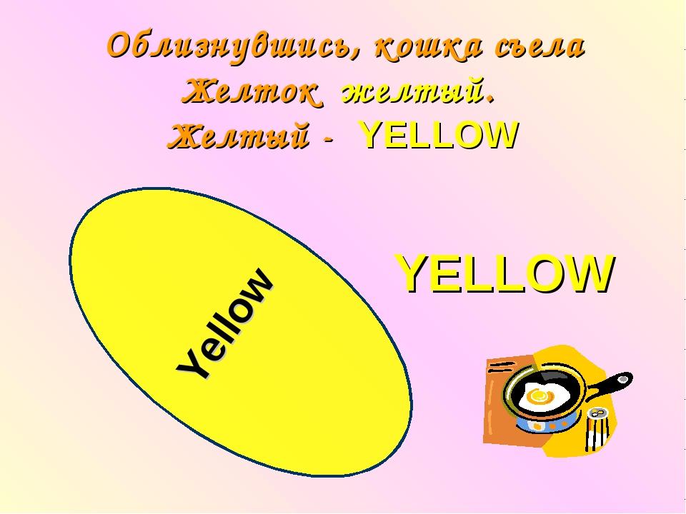Облизнувшись, кошка съела Желток желтый. Желтый - YELLOW Yellow YELLOW