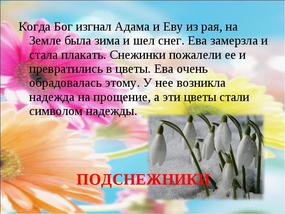 Когда Бог изгнал Адама и Еву из рая, на Земле была зима и шел снег. Ева замер...