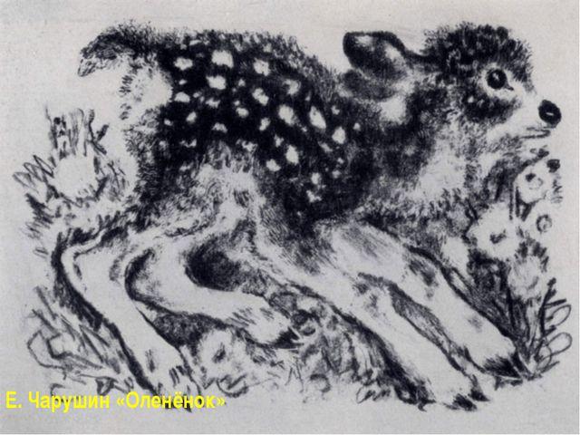 Е. Чарушин «Оленёнок»