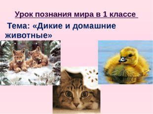 Урок познания мира в 1 классе Тема: «Дикие и домашние животные»