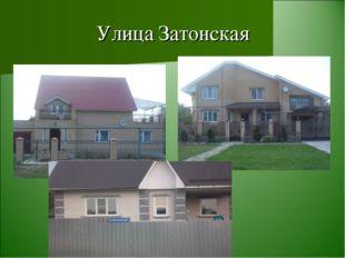 Улица Затонская