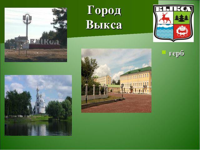 Город Выкса герб