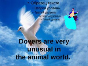 Dovers are very unusual in the animal world.