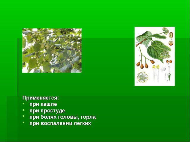 Применяется: при кашле при простуде при болях головы, горла при воспалении ле...