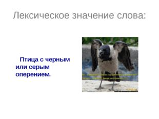 Лексическое значение слова: Птица с черным или серым оперением.