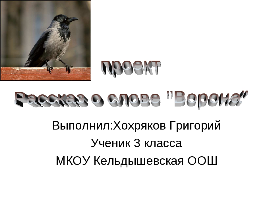 Выполнил:Хохряков Григорий Ученик 3 класса МКОУ Кельдышевская ООШ