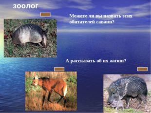 Можете ли вы назвать этих обитателей саванн? А рассказать об их жизни? зоолог