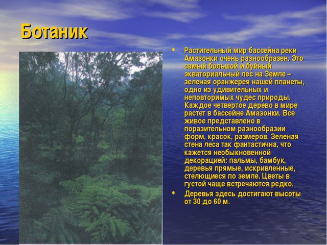Ботаник Растительный мир бассейна реки Амазонки очень разнообразен. Это самый...