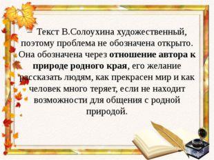– Текст В.Солоухина художественный, поэтому проблема не обозначена открыто.