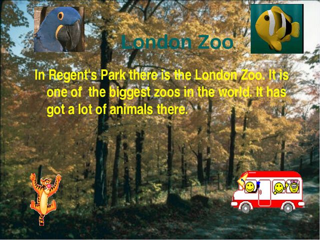 London Zoo In Regent's Park there is the London Zoo. It is one of the biggest...