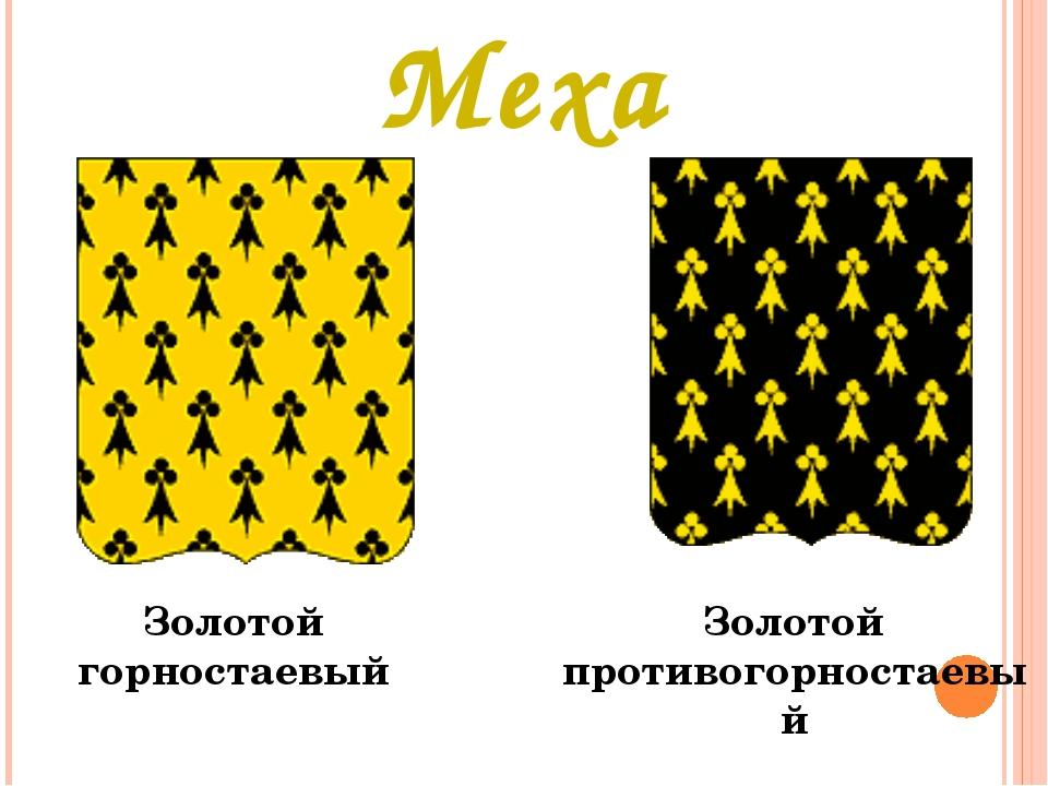 Меха Золотой горностаевый Золотой противогорностаевый