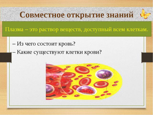 Совместное открытие знаний – Из чего состоит кровь? – Какие существуют клетк...