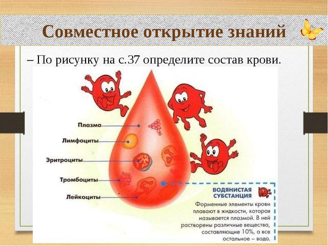 Совместное открытие знаний – По рисунку на с.37 определите состав крови.