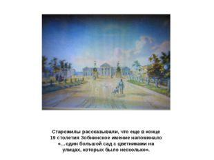Старожилы рассказывали, что еще в конце 19 столетия Зобнинское имение напомин