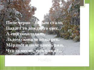 Ноябрь Поле черно – белым стало, Падает то дождь, то снег. А еще похолодало,