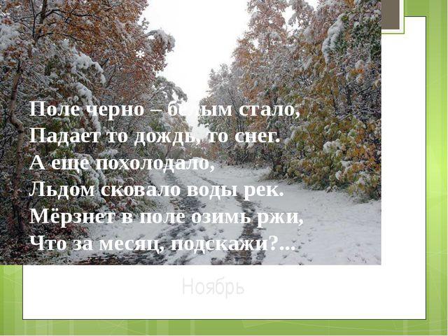 Ноябрь Поле черно – белым стало, Падает то дождь, то снег. А еще похолодало,...