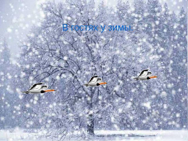 В гостях у зимы.