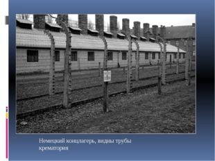 Немецкий концлагерь, видны трубы крематория