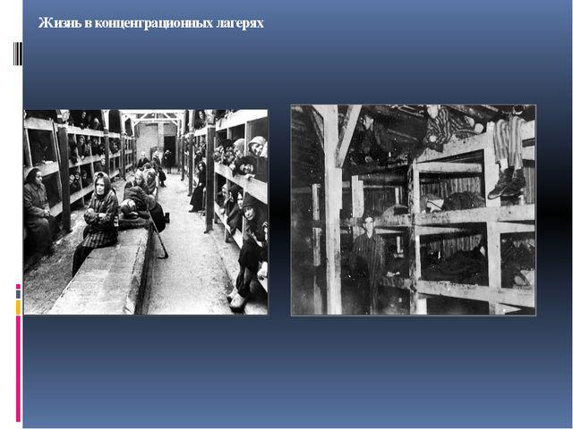 Жизнь в концентрационных лагерях