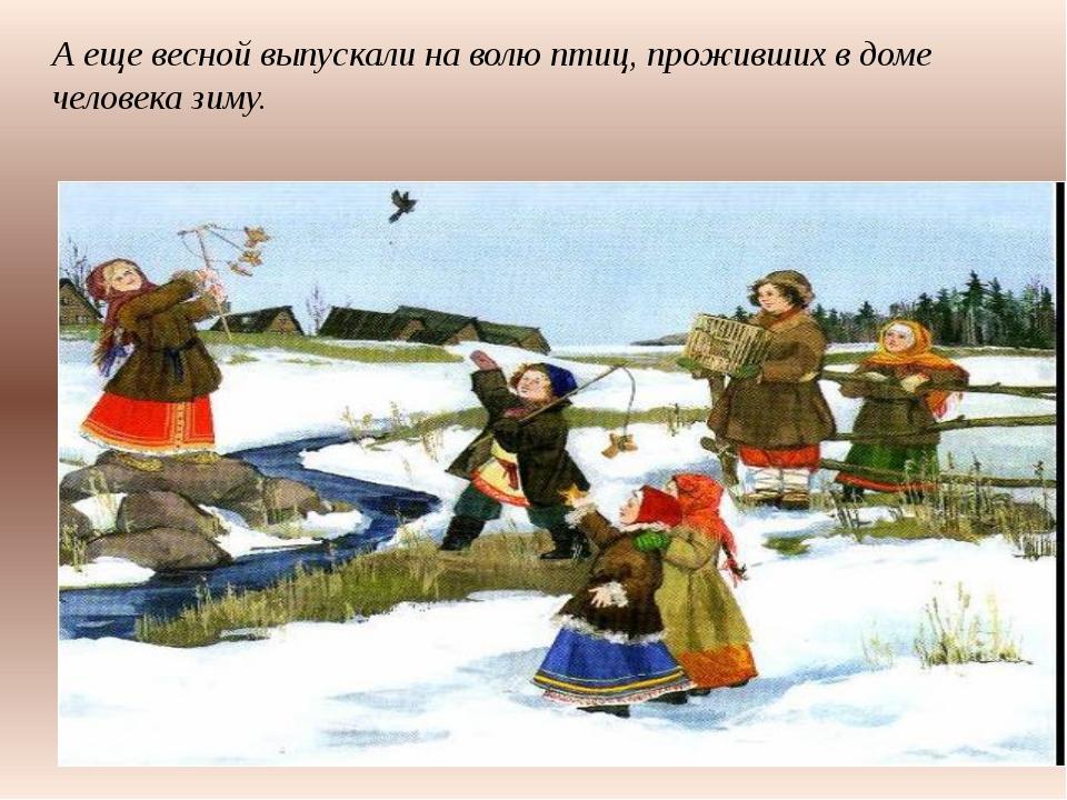 А еще весной выпускали на волю птиц, проживших в доме человека зиму.