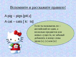 Вспомните и расскажите правило! A pig – pigs [piɡz] A cat – cats [ kӕts] Если