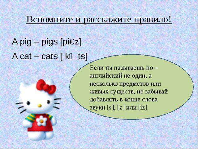 Вспомните и расскажите правило! A pig – pigs [piɡz] A cat – cats [ kӕts] Если...