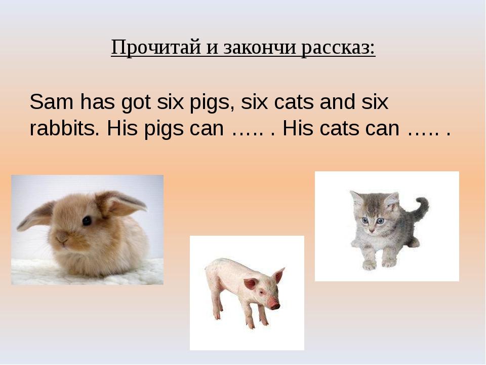 Прочитай и закончи рассказ: Sam has got six pigs, six cats and six rabbits. H...