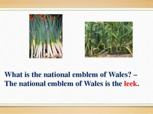 What is the national emblem of Wales? – The national emblem of Wales is the l