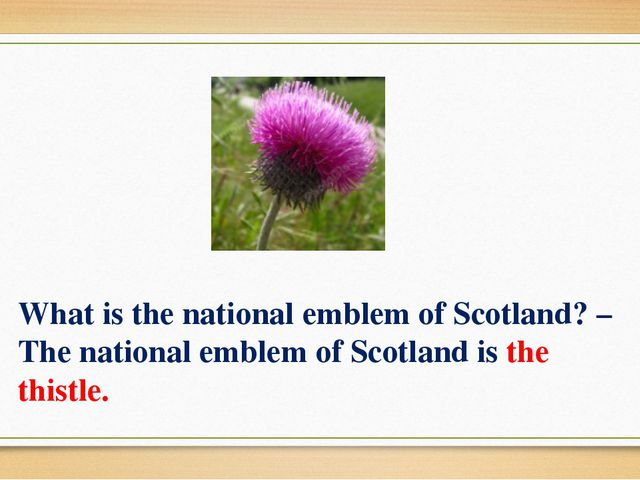 What is the national emblem of Scotland? – The national emblem of Scotland is...