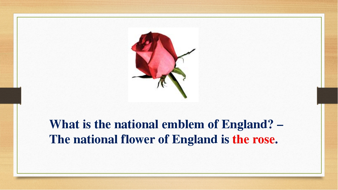 What is the national emblem of England? – The national flower of England is t...