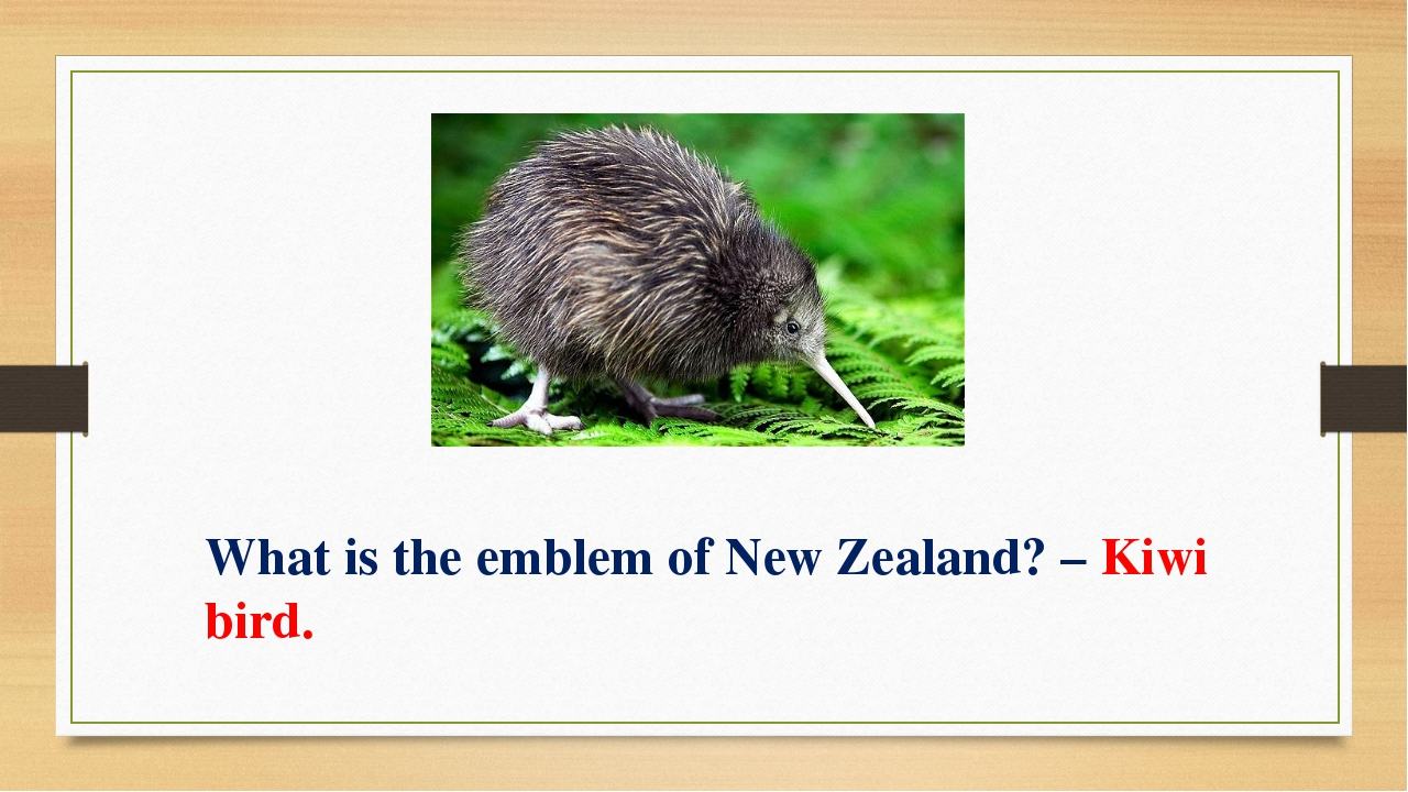 What is the emblem of New Zealand? – Kiwi bird.