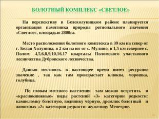 * На перспективу в Белохолуницком районе планируется организация памятника пр